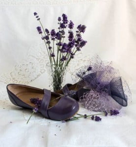 Oct 2014 Photo of the Month - Purple by Ann ArcherOct 2014 Photo of the Month - Purple by Ann ArcherOct 2014 Photo of the Month - Purple by Ann Archer
